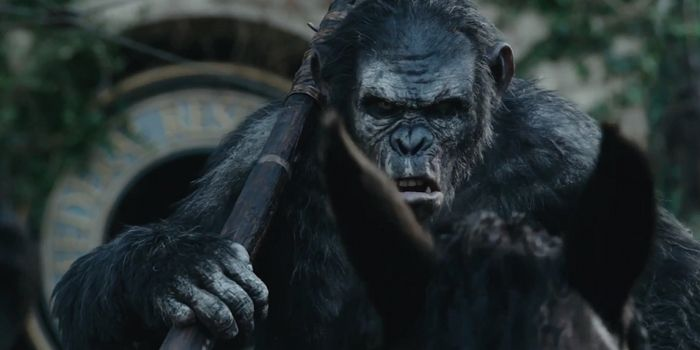 Dawn-of-War-for-the-Planet-of-the-Apes-2016