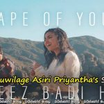 Ed Sheeran – Shape Of You Cheez Badi Hai (Vidya Vox Mashup Cover) with Sinhala Subtitles